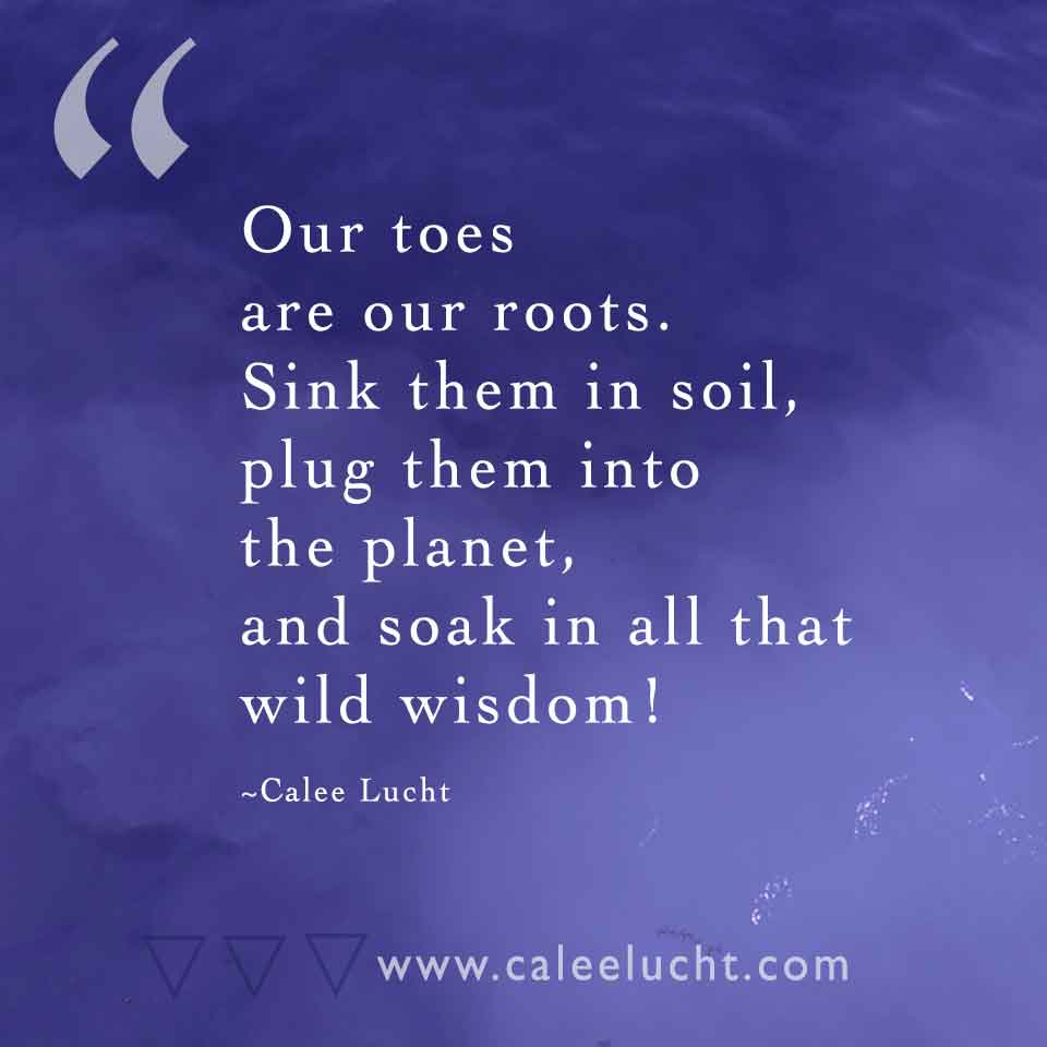 Toes-are-roots-Calee-Lucht-empowerment-coach.jpg