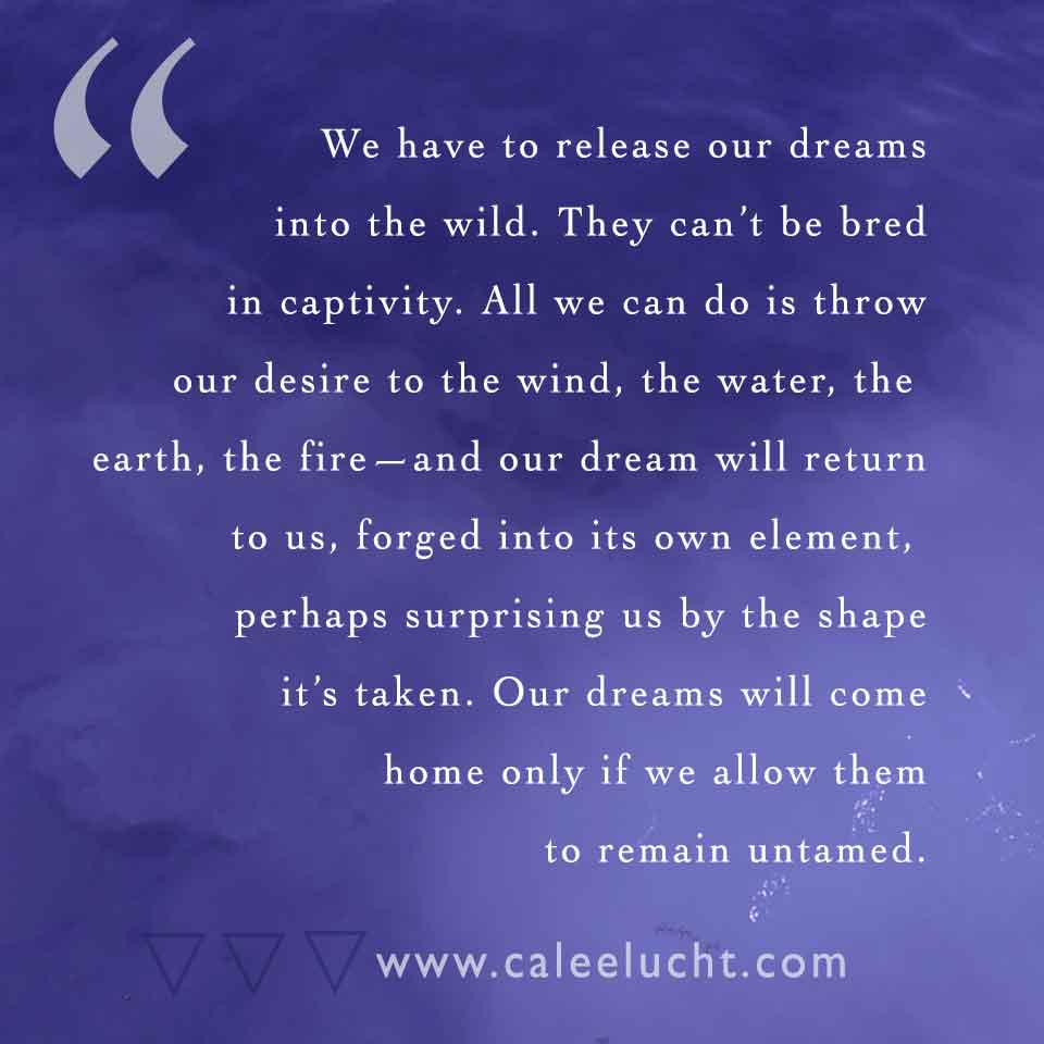 Untamed-dreams-Calee-Lucht-empowerment-coach.jpg