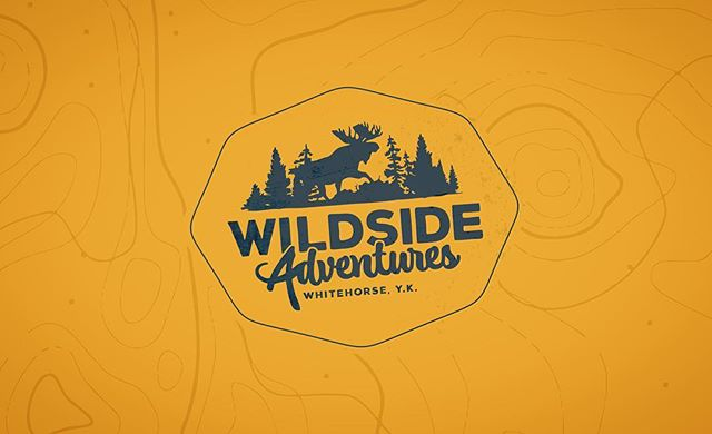 If you find yourself in the #yukon these are some really cool folks!  wildsideyukon.com #newprojects #branding #design #web #makestuff #stillaprintshop #yellowonyellow