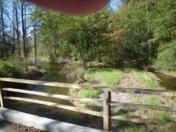176_Oct11_44_Downstream_from_Rec_Park_Bridge.jpg