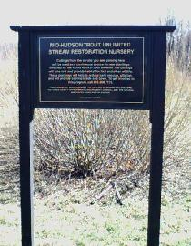 210_willow_sign.JPG