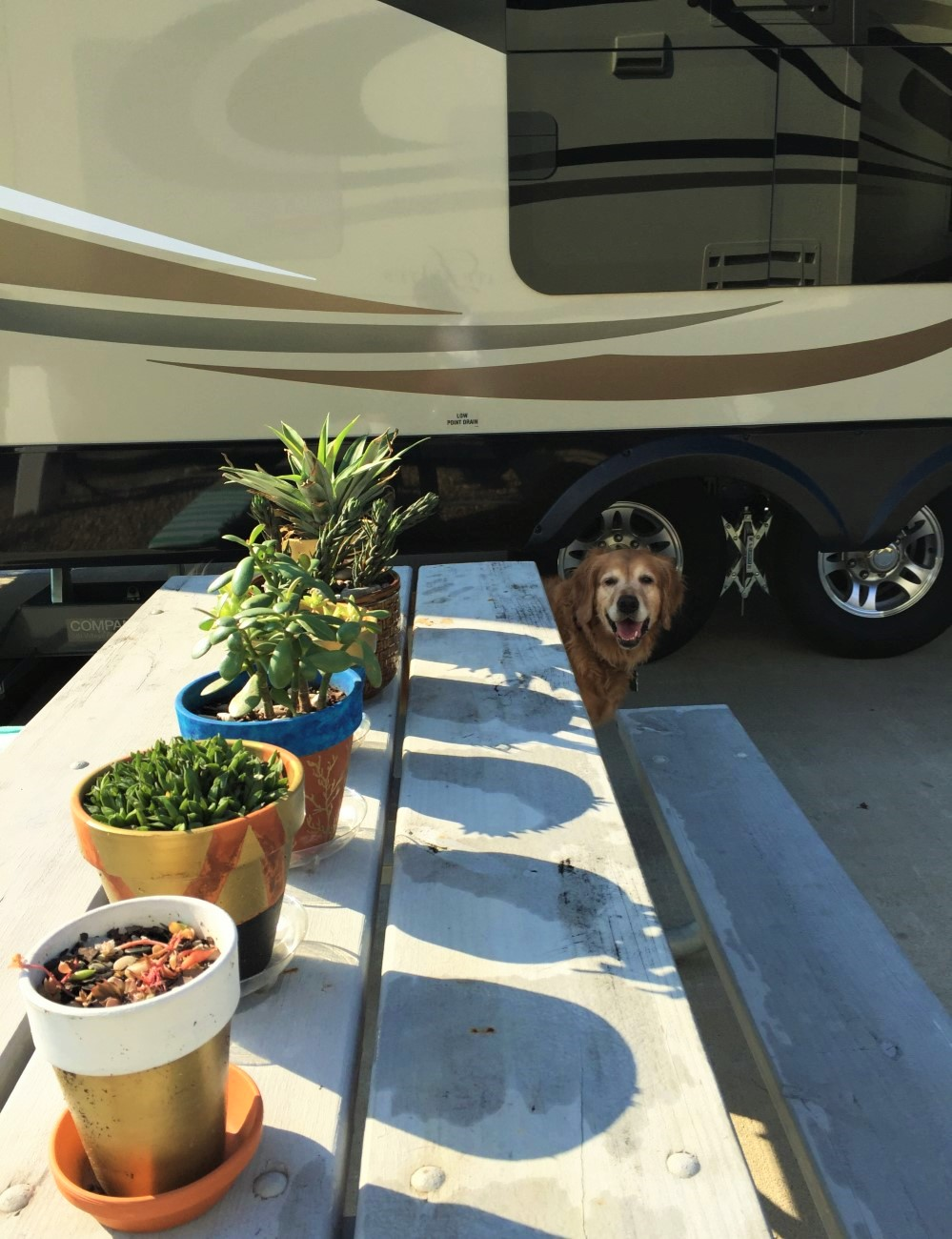 Our Tiny House 2015 Jayco Pinnacle 36KPTS RV Tour! — ArtSea Chic