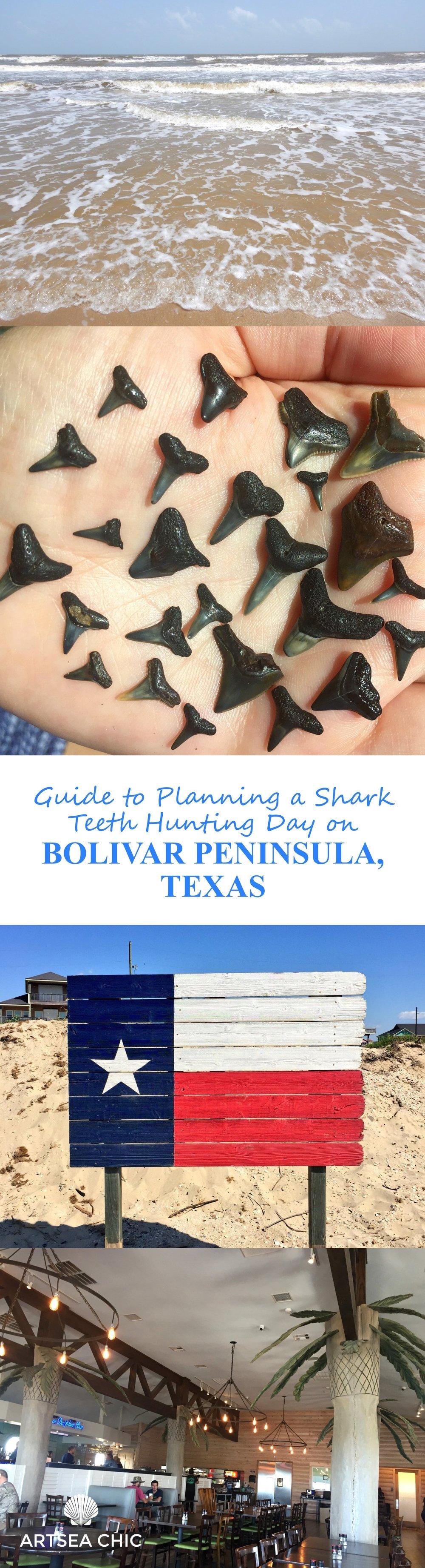 Guide to Planning a Shark Teeth Hunting Trip on Bolivar Peninsula.jpg