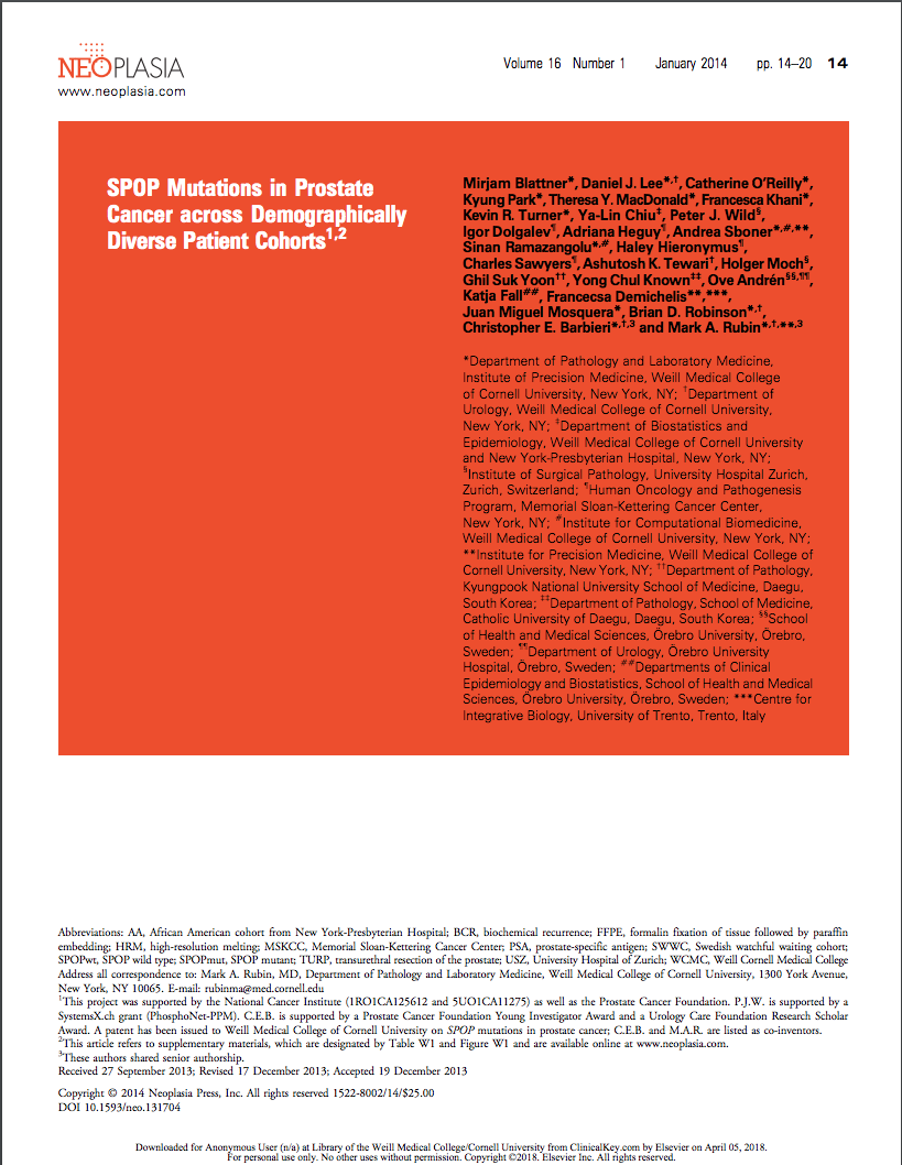 SPOP mutations in prostate cancer across demographically diverse patient cohorts.png