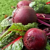 23932935-fresh-organic-beets.jpg