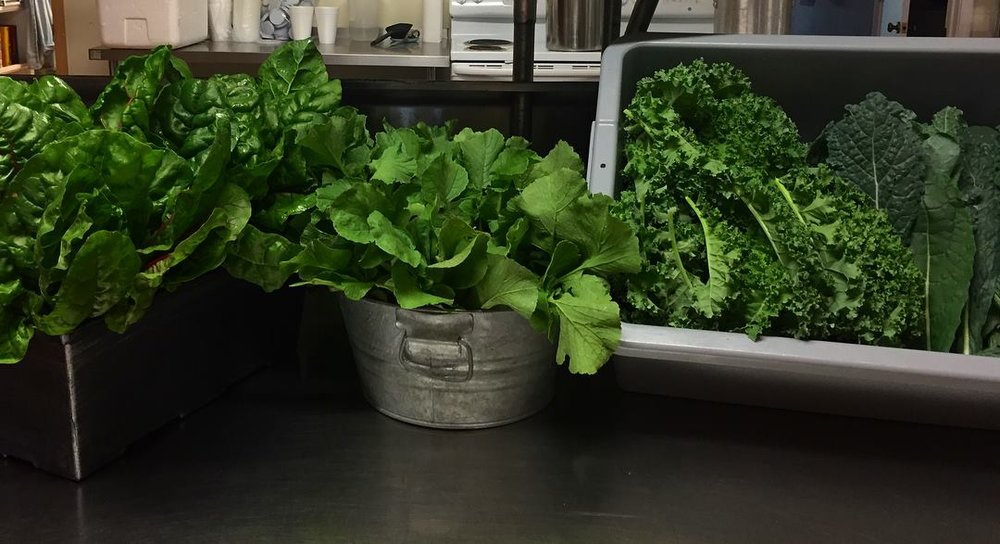 Morning Gory Greens ready for market.jpg