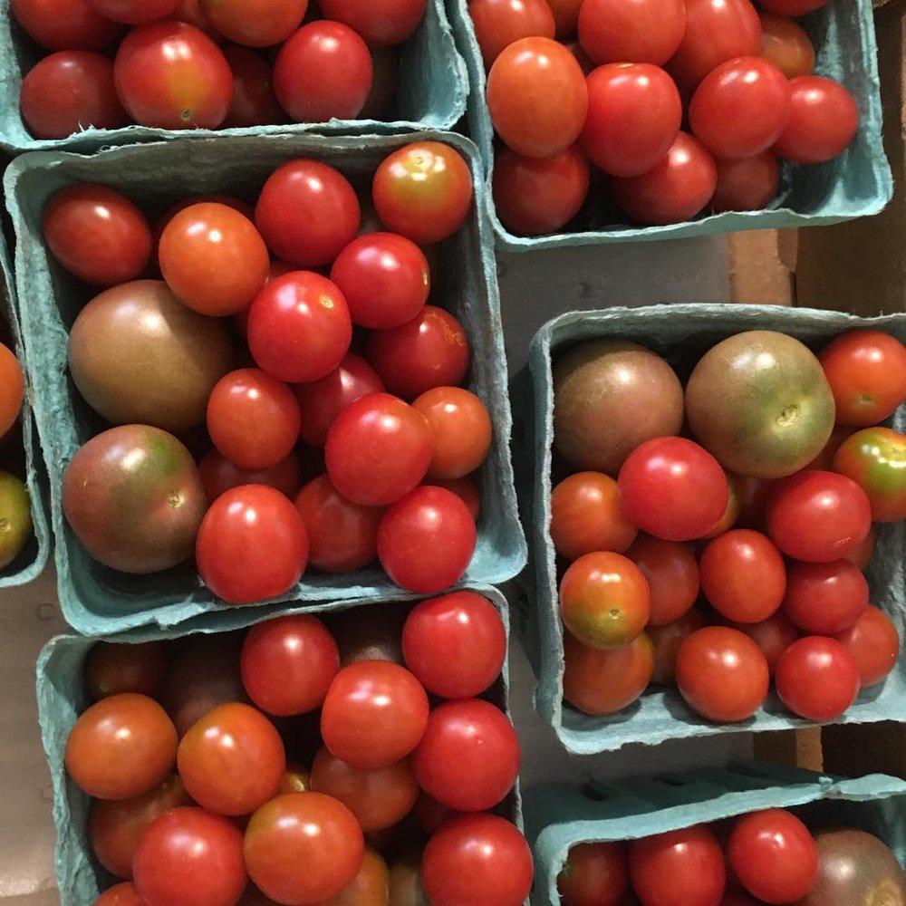 Quiet Acres cherry tomatoes.jpg