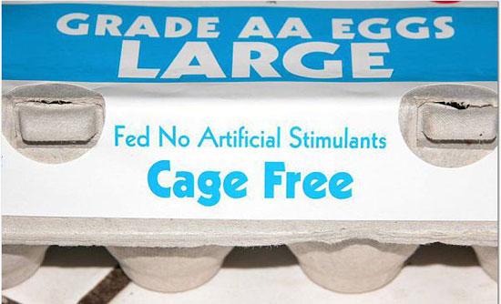 cage-free.jpg