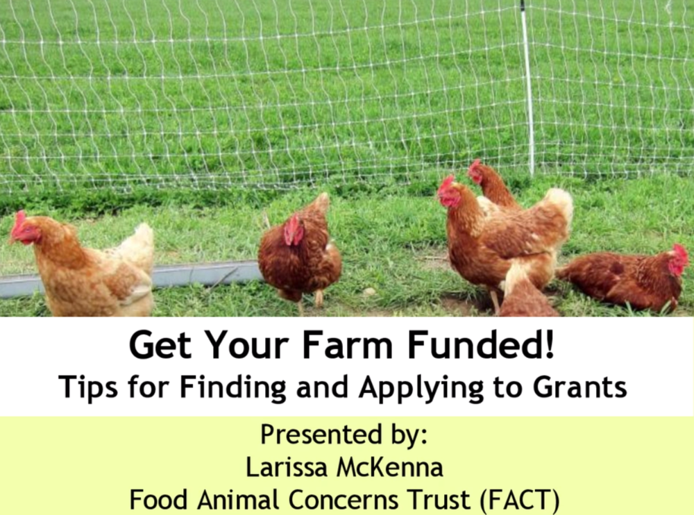 Get Your Farm Funded – Tips for Applying to Grants, May 9, 2017 Learn about the types of funding available for farmers and gain helpful pointers for crafting a successful proposal. FACT's Humane Farming Program Director Larissa McKenna provides practical advice for farmers navigating the grant application process. For more information on applying to grants, download FACT's Get Your Farm Funded Guide.  Download the presentation slides