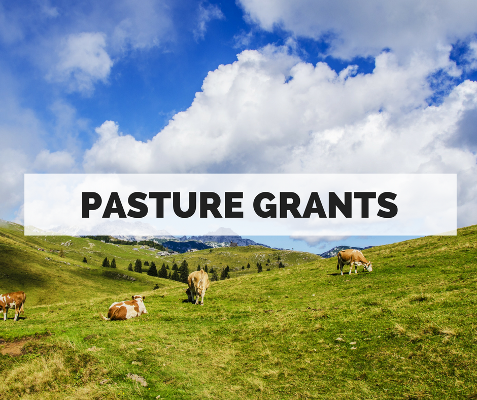 Does your project help you transition to a pasture-based system, improve the quality of your pasture,and/or expand your animals' access to well-managed pasture?    > Apply for a Pasture Improvement Grant
