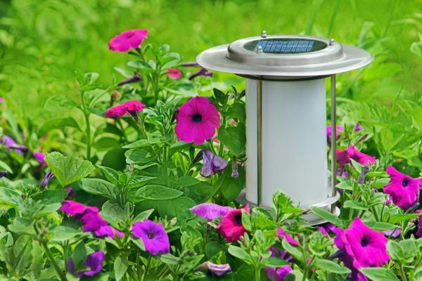 garden_light_l1.jpg