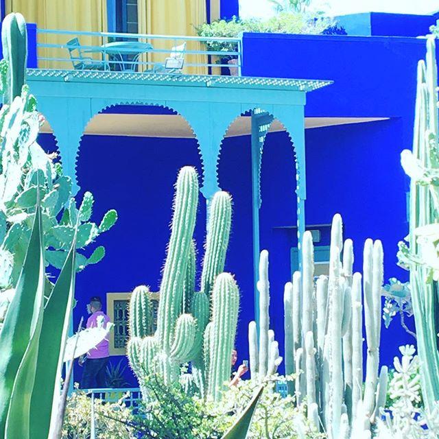 Enchanted garden + Majorelle blue 💙#tribecharms #startwithyourheart