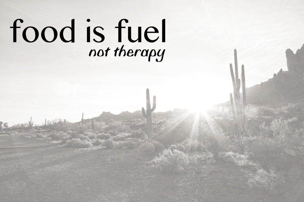 Food Is Fuel. Not Therapy.  The End.