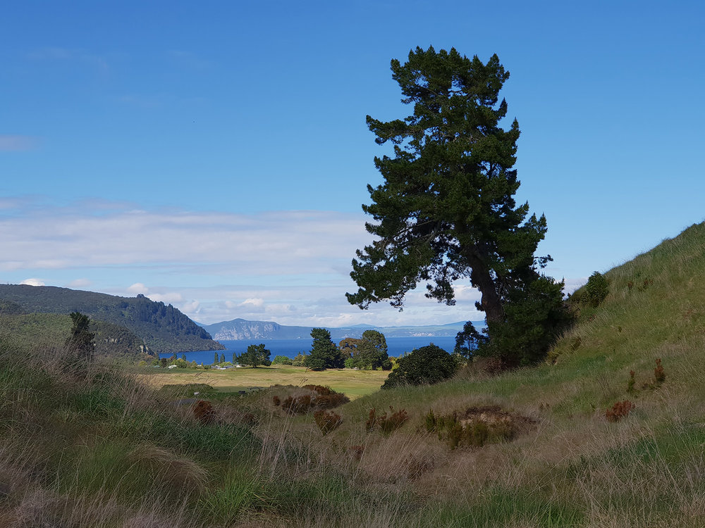 Kinloch Golf Club | Taupo, New Zealand