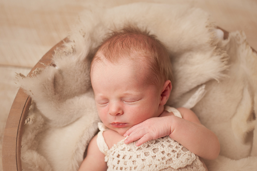 newborn-photographer-powell.jpg