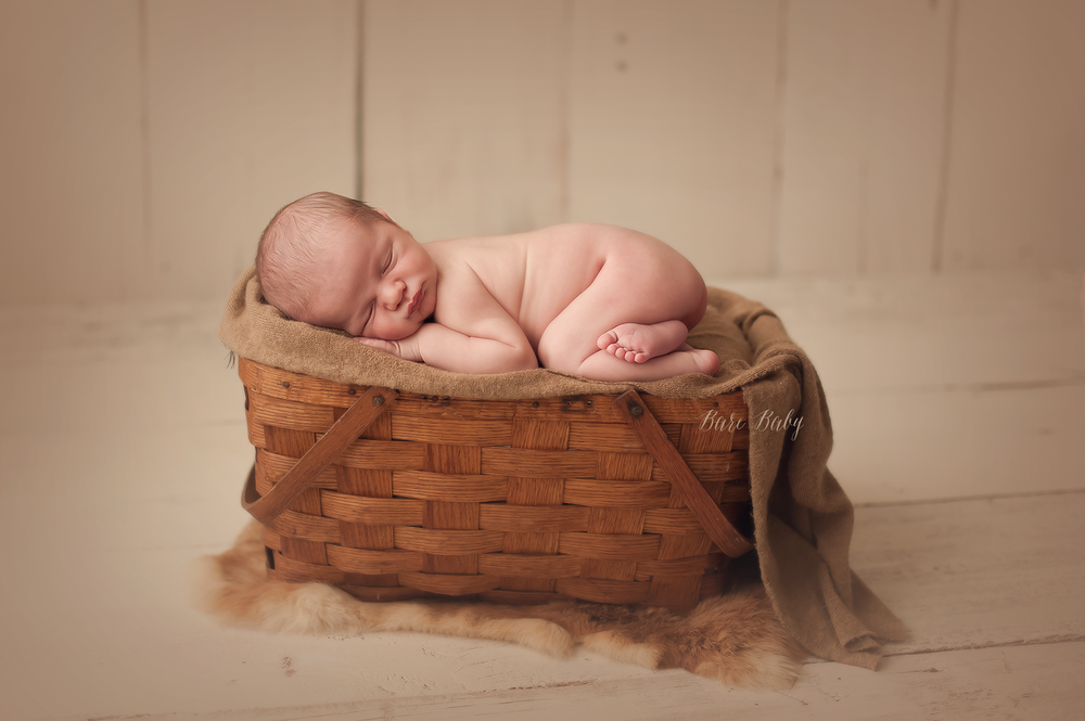 new-albany-newborn-photographer.png