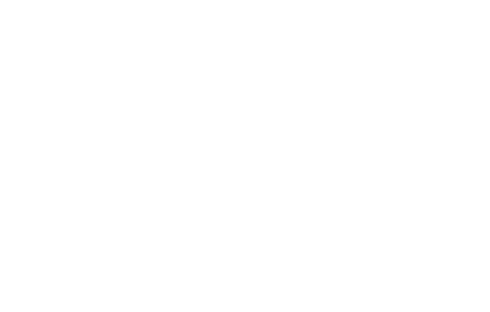 The Windham Local
