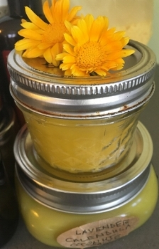 Calendula Officinalis + Salve