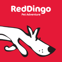 reddingo.png