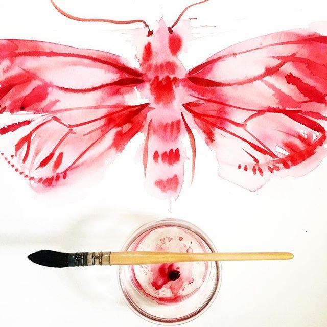 May your day unfold into joy and light ~ Happy  #pollinatormonday everyone! #doitfortheprocess  #metamorphosis