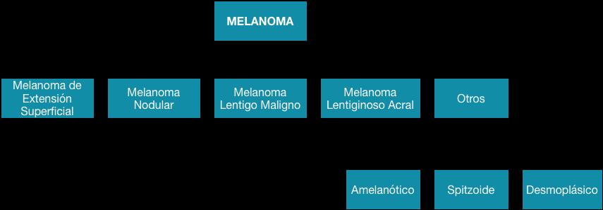 Subtipos de melanoma   Clasificación  Cáncer de piel