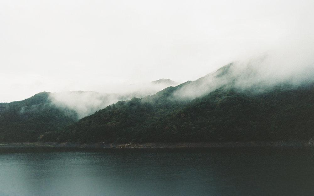 A foggy morning by the lake. A Kodak Portra 160 professional film 35mm.