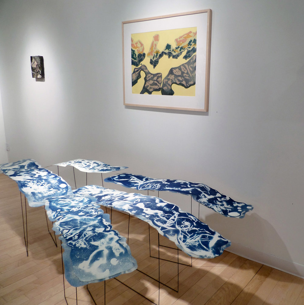 Flux Series, floating installation, + Zen Beach, handpainted screen print,  Bromfield Gallery, Boston, MA