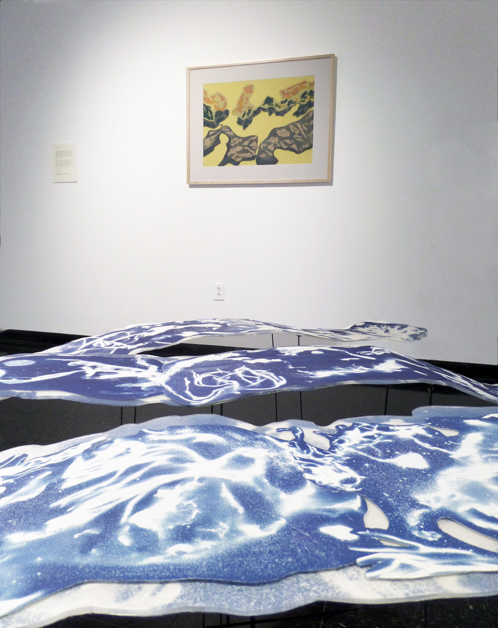 Thesis Exhibition, Cyanotype Sculptures + Screen Prints, CVPA UMass Dartmouth