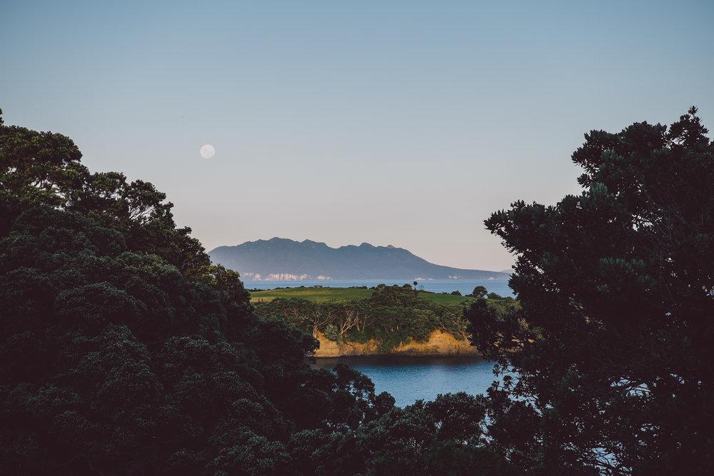 GoatIsland-Auckland-JK-8 copy.jpg