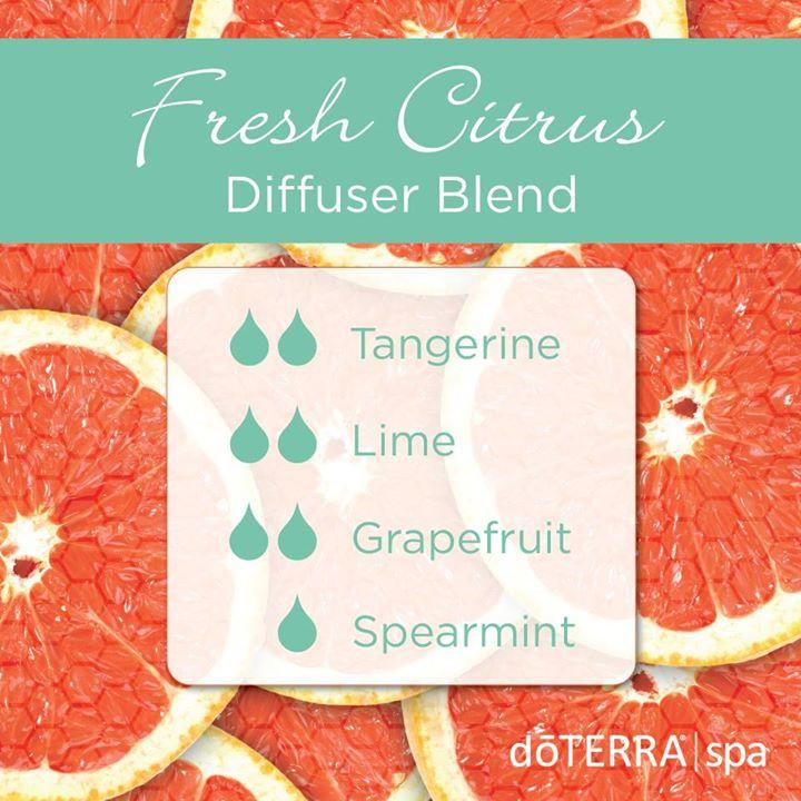 Fresh-Citrus-Diffuser-Blend.jpg
