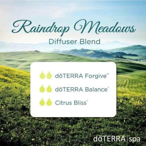 doTERRA-Essential-Oils-Raindrop-Meadows-Diffuser-Blend-500x500.jpg