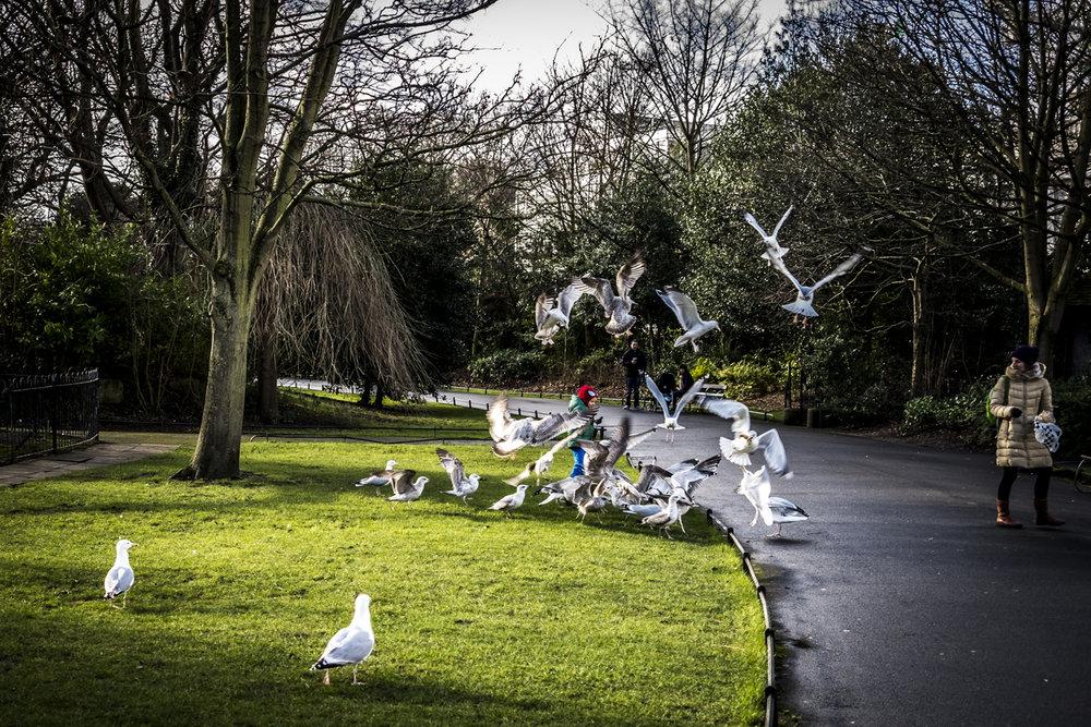 Dublin_00745.jpg
