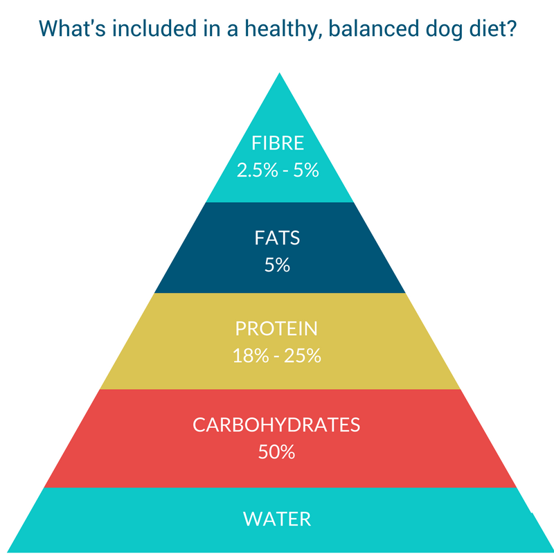 balanced dog diet