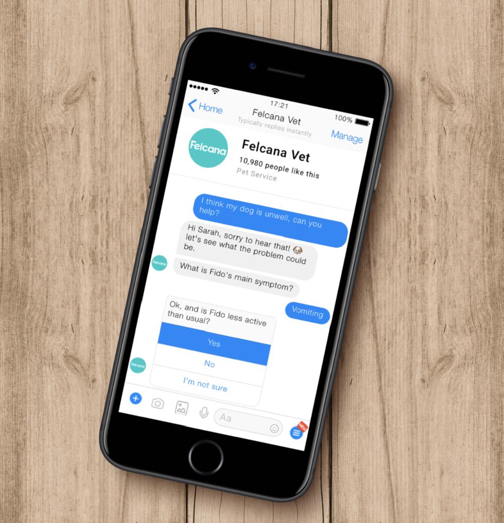chatbot mockup4.png