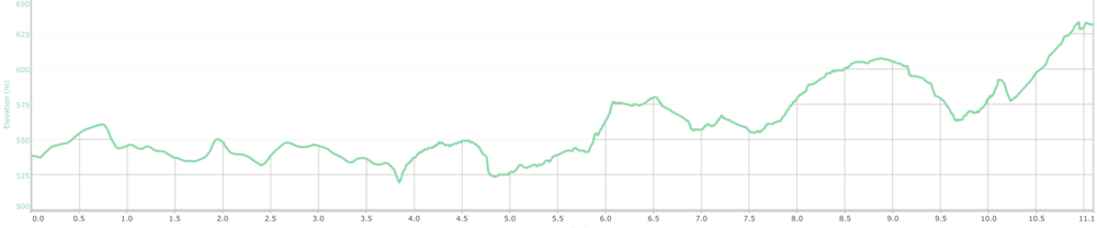 COURSE ELEVATION PROFILE - 11km