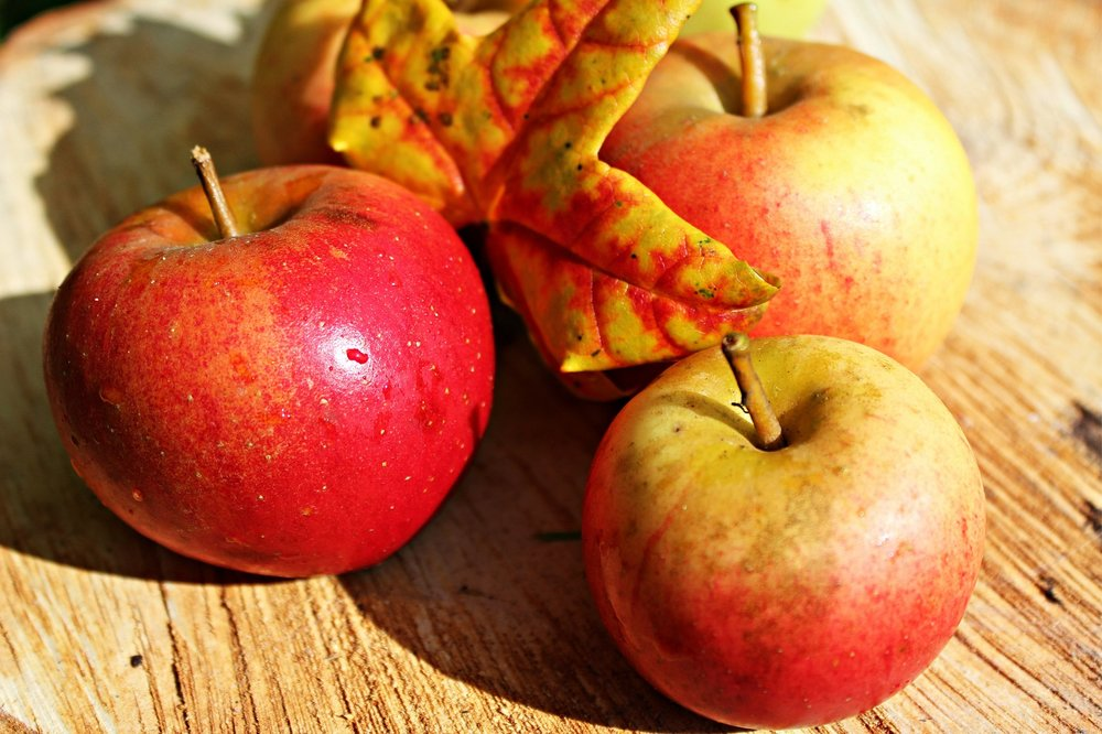 apple-496977_1920.jpg