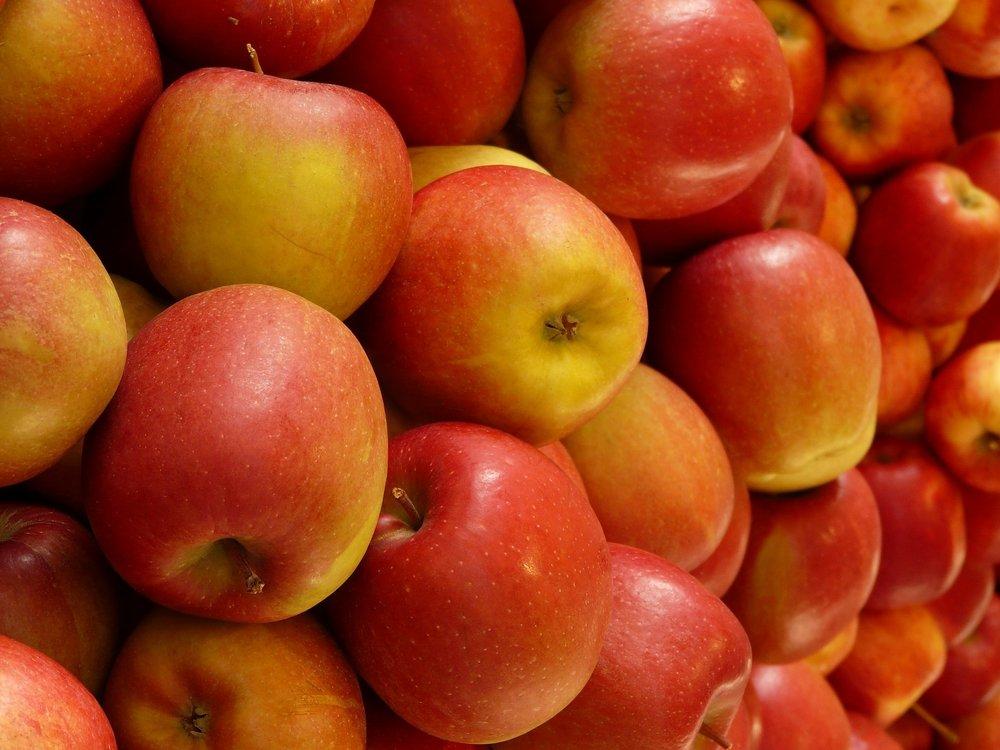 apple-5880_1920.jpg