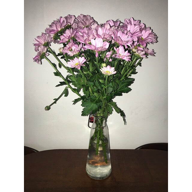 Nanny Bought A House Warming 💐 . . . #flowers #housewarming #nature #greenbeauty #veganblogger #blogger #bbloggers #atonewithnature #decor  #veganofig #vegansofinstagtam #veganfitness #instavegan #yesvegan  #vegangirl #veganblog #veganblogger #veganlifestyle