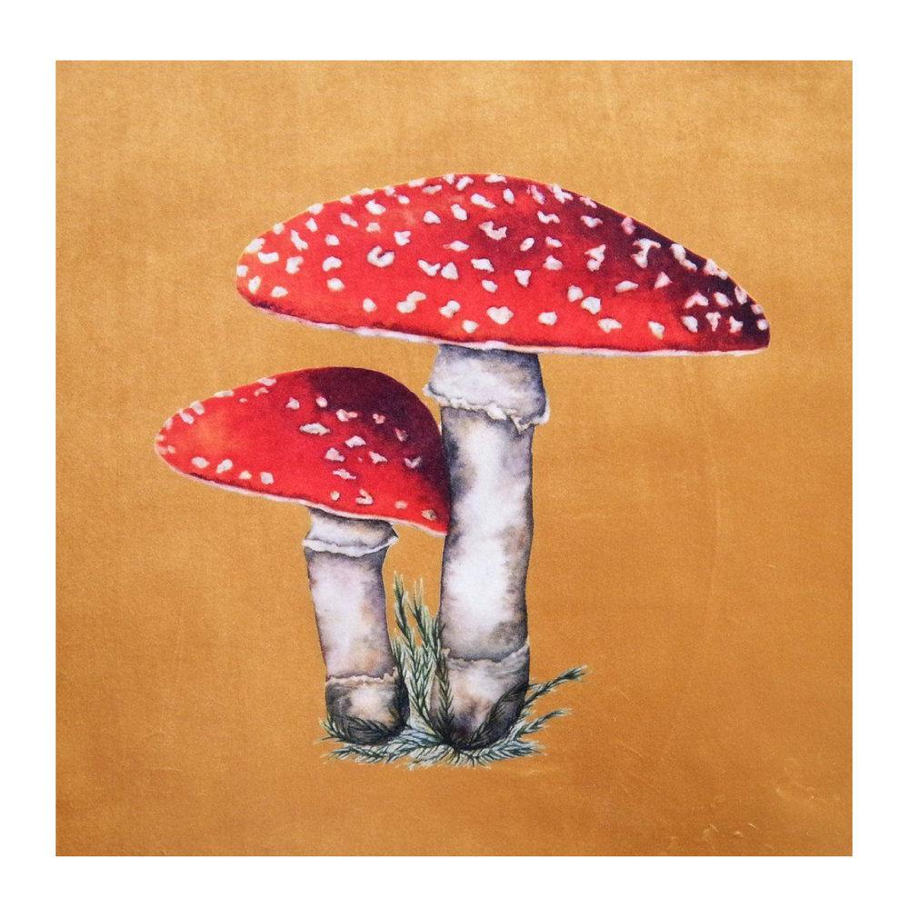 Toadstool Gold - Velvet