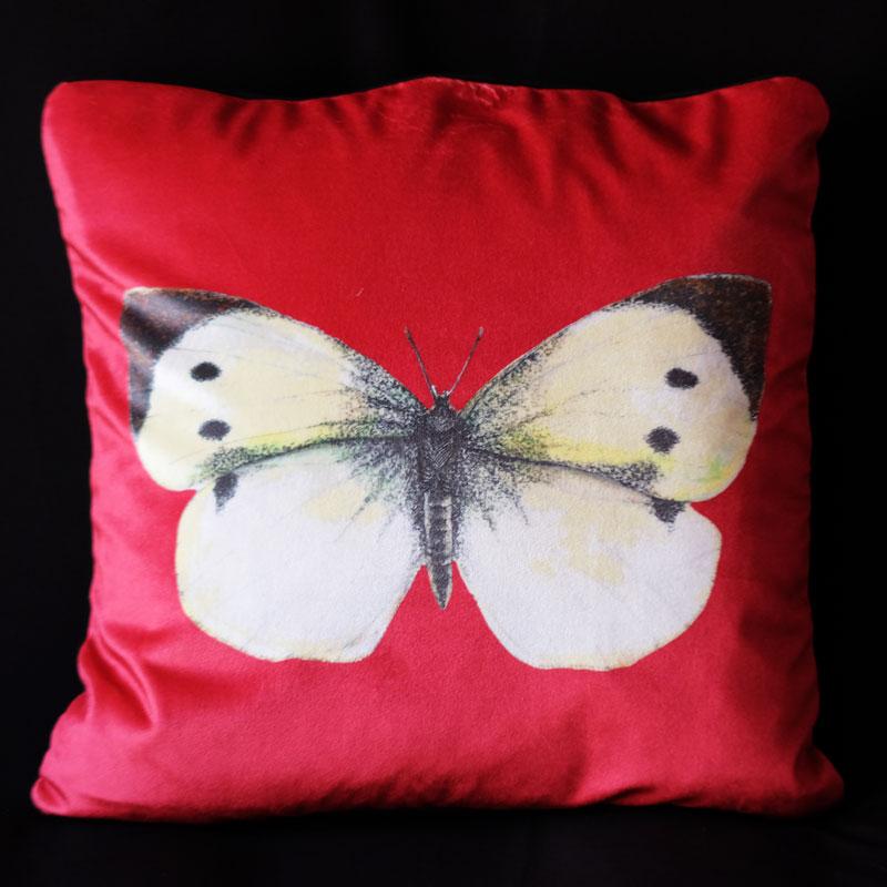 Cabbage White British Butterfly Strawberry - Velvet