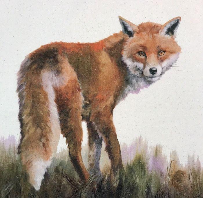 Sneaky Fox - Organic Cotton