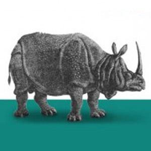 fluent-conference-rhino.jpg