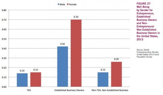 Chart from 2013 Global Entrepreneurship Monitor U.S. Report