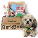 Bark Box, pet subscription service, gifts for dogs