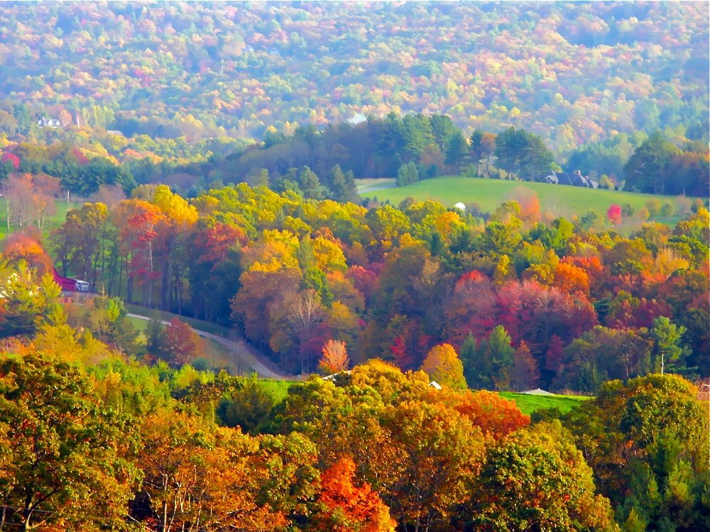 fall colors right pixels.jpg