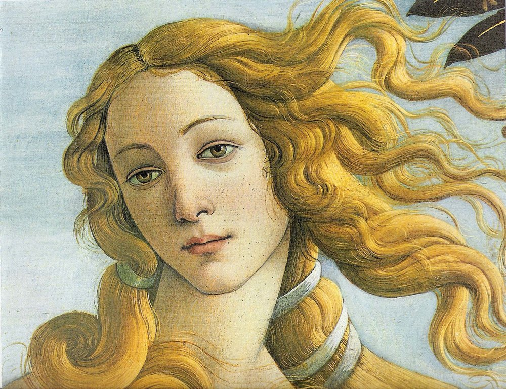 Venus,the goddess of beauty has a newborn's delicate nearly translucent skin. The brightness, clarity and freshness of her complexion convey good health and youthfulness. Tempera on canvas, Botticelli,1486.