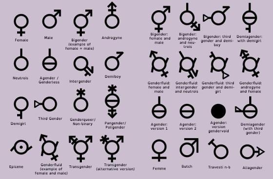 Gender-chart.jpg