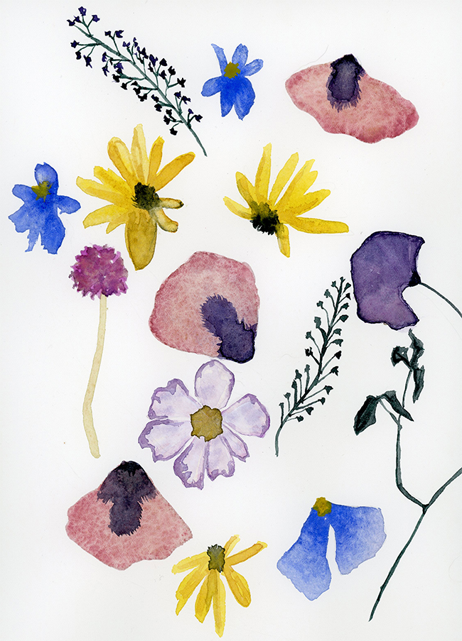"""""""pressed flowers"""" - watercolor on paper, 8"""" x 10"""""""