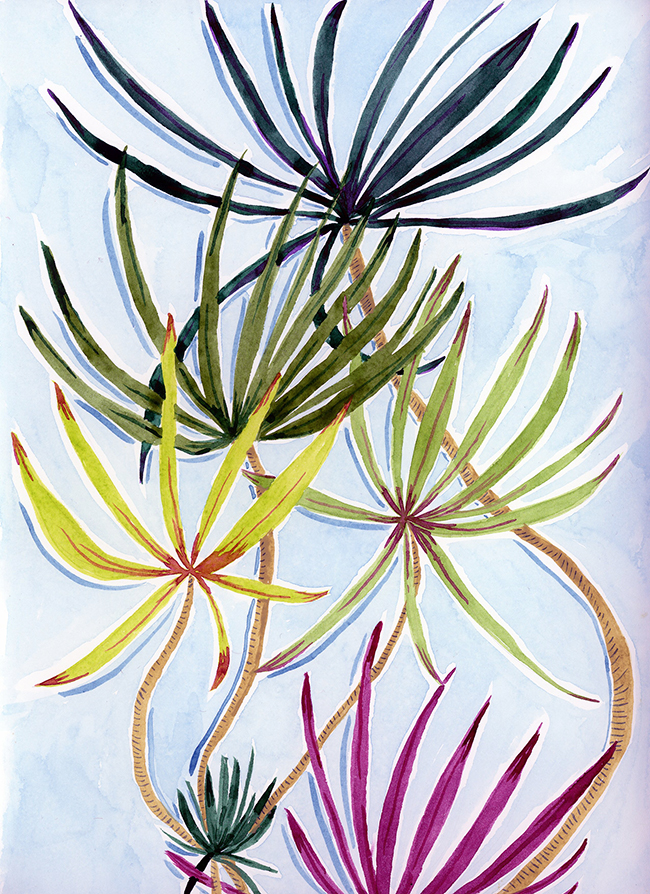 """""""palm palm"""" - watercolor on paper, 9"""" x 12"""""""