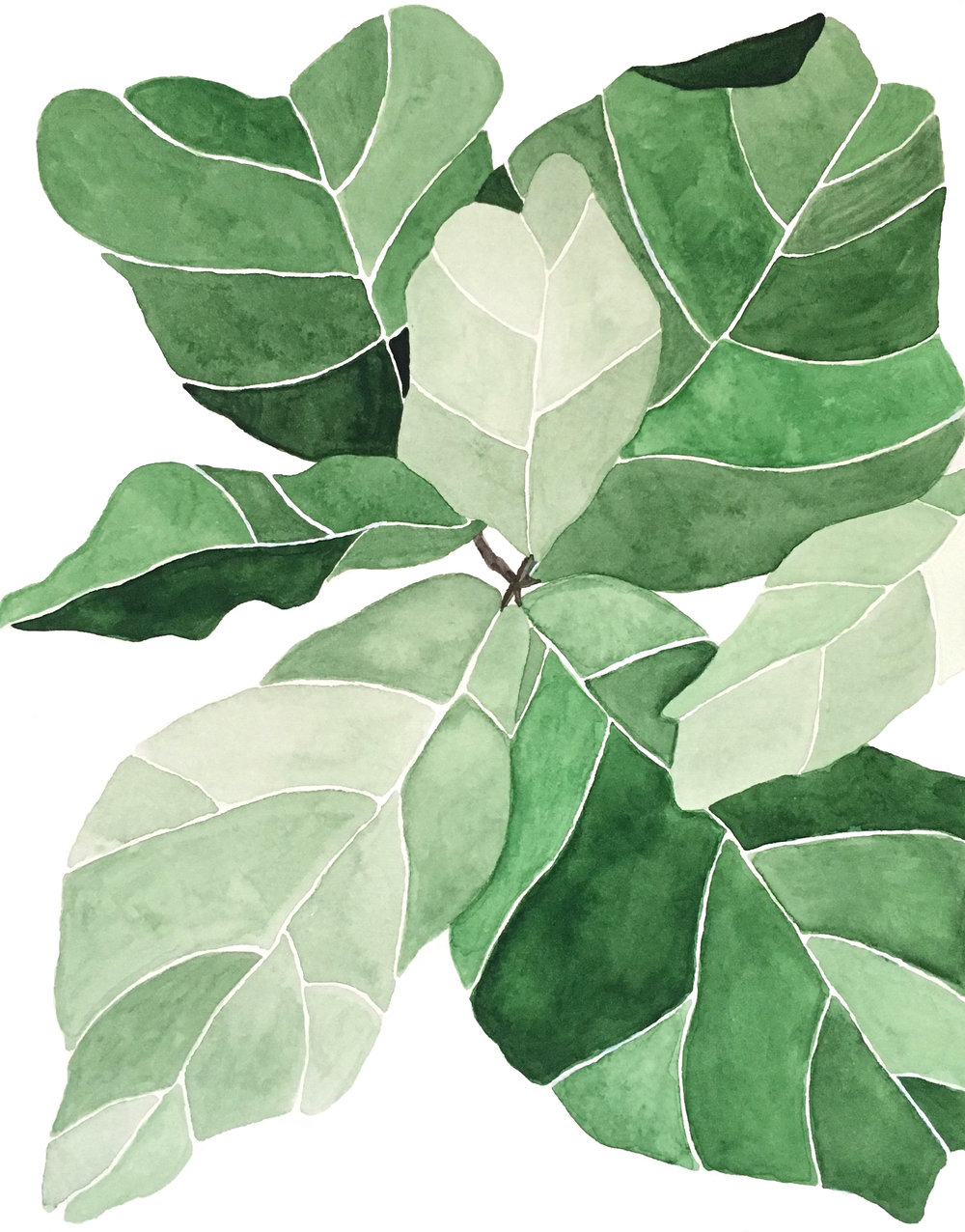 """FIDDLE LEAF FIG I - Watercolor on paper, 9"""" x 12"""""""